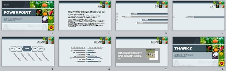 灰蓝拼接农副行业ppt模板图片