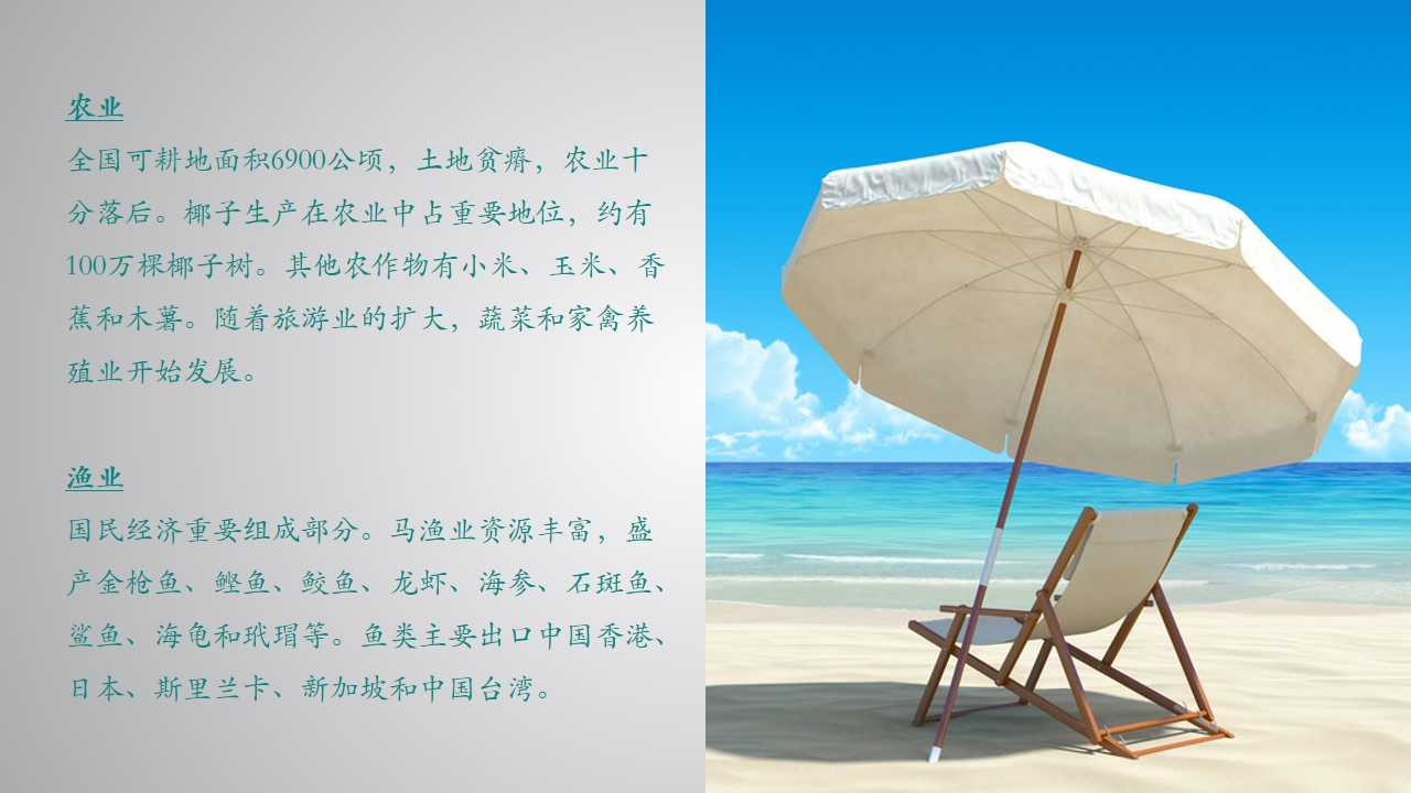 qq背影自然風景雨傘