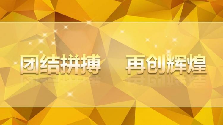 2015年会颁奖典礼 ppt 模板下载