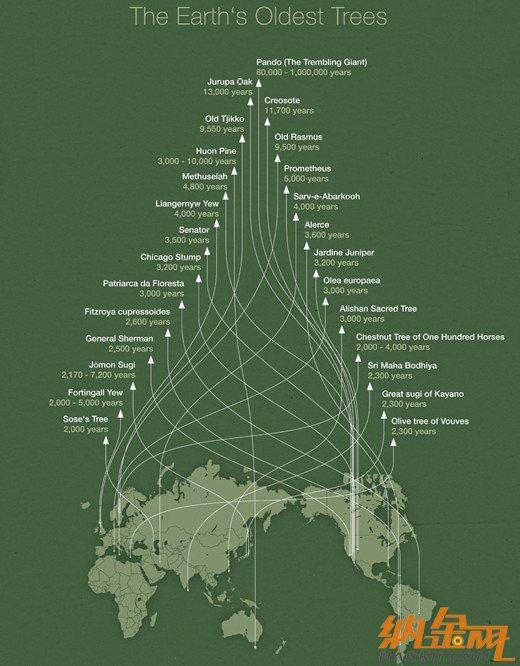 【演界信息图表】绿地图-地球老龄化
